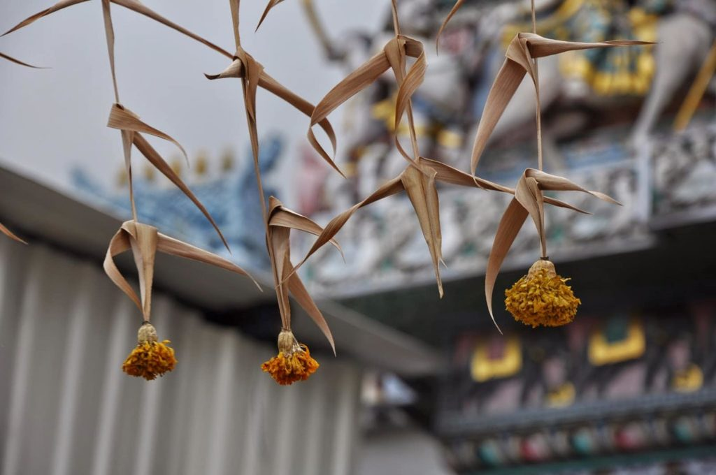 Dried marigolds hanging in front of Hindu temples in Singapore