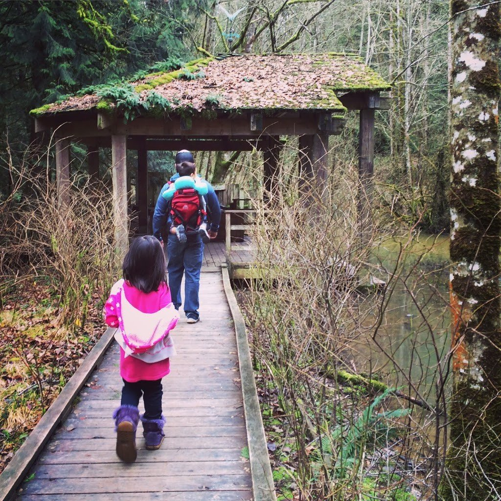 A girl and father, who is carrying a baby in a backpack carrier, walking along a boardwalk in a forest, experiencing the educational benefits of travel