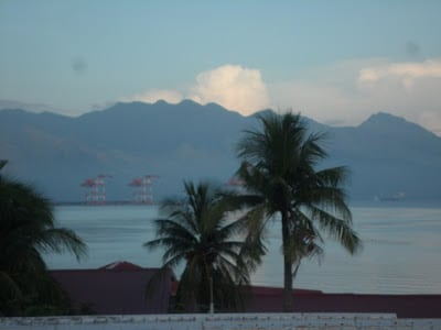 View of palm trees at Subic Bay as part of Philippines travel and tourist spots in Luzon