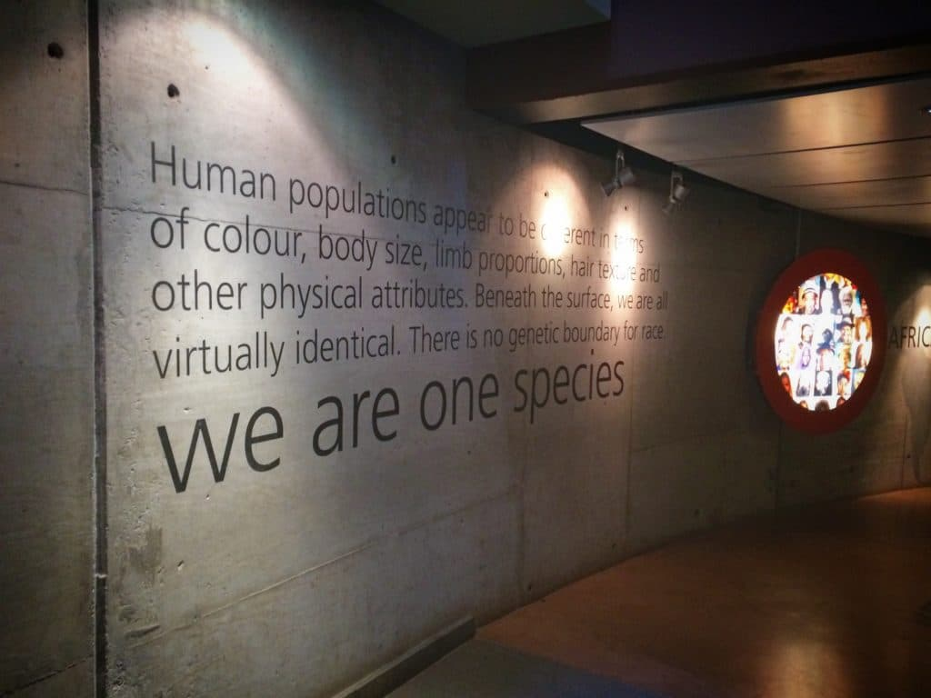 An exhibit at the Cradle of Humankind during a visit of 48 hours in Johannesburg