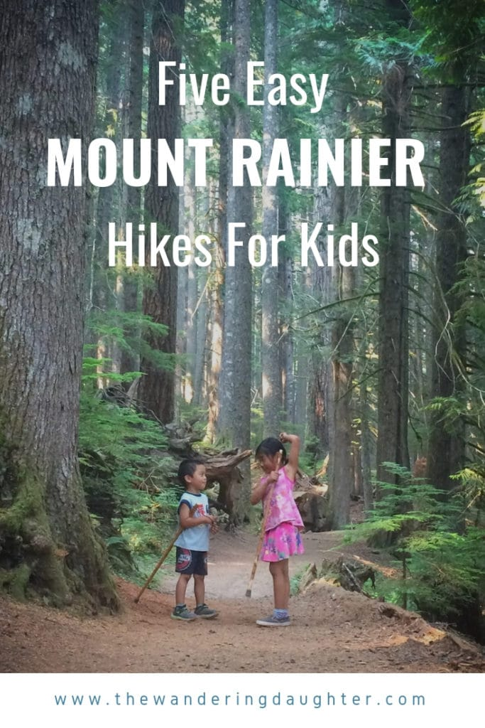 Five Easy Mount Rainier Hikes For Kids   The Wandering Daughter   Suggestions for easy hikes for young kids at Mount Rainier National Park in Washington state.
