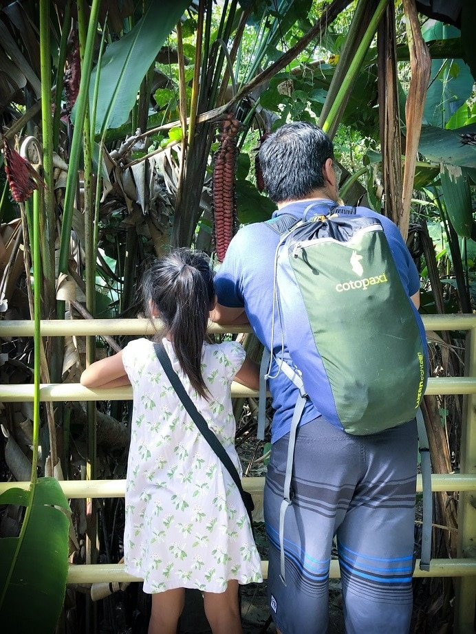 Ideas for a 10 day Costa Rica itinerary for families