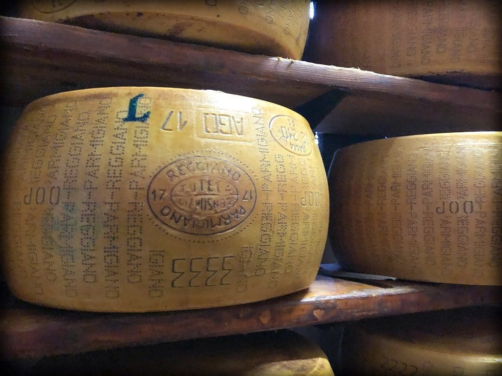 A wheel of parmesan cheese stamped with Parmigiano Reggiano brand, with other wheels in the background, aging on a shelf at a dairy in Parma Italy. An example of what to do in Parma.