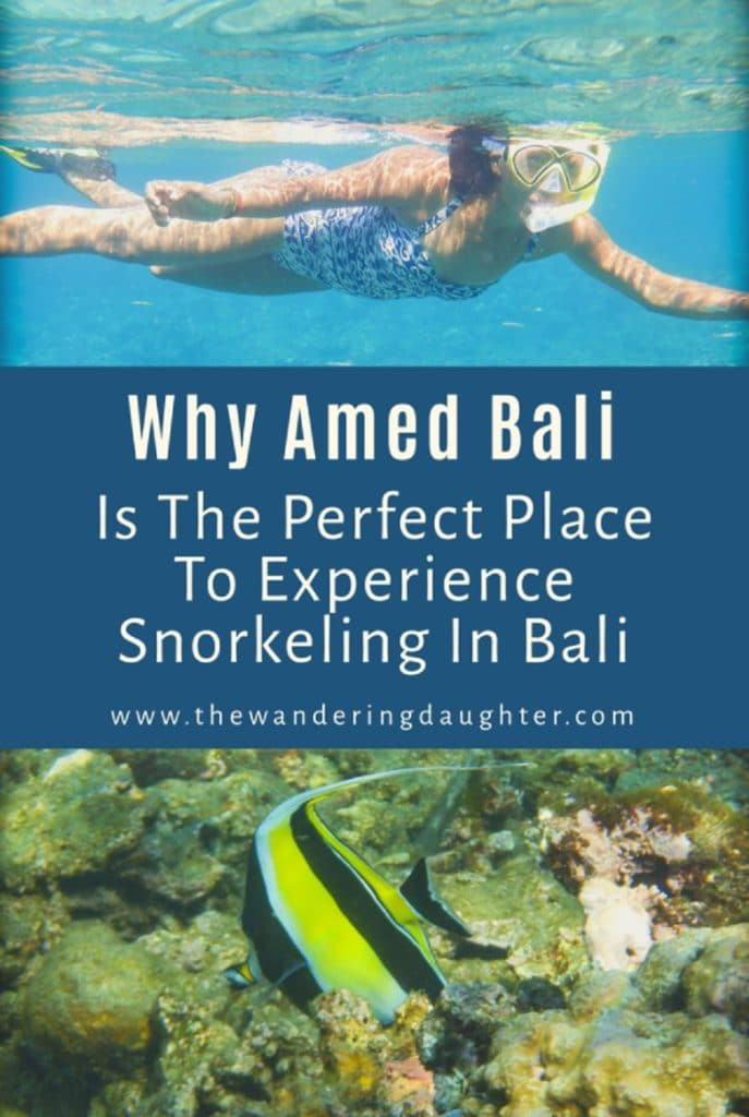 Why Amed Bali Is The Perfect Place To Experience Snorkeling In Bali | The Wandering Daughter | Reasons why Amed, Bali is a great place for snorkeling. Pinterest image with a woman snorkeling at the top, and a yellow, white, and black striped fish at the bottom.