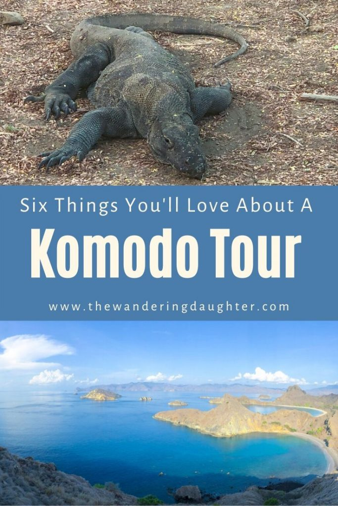 Six Things You'll Love About A Komodo Tour   The Wandering Daughter   Reasons why families will enjoy taking a Komodo tour to see Komodo dragons in Indonesia. This is a sponsored post, created in partnership with Bintang Komodo Tours.